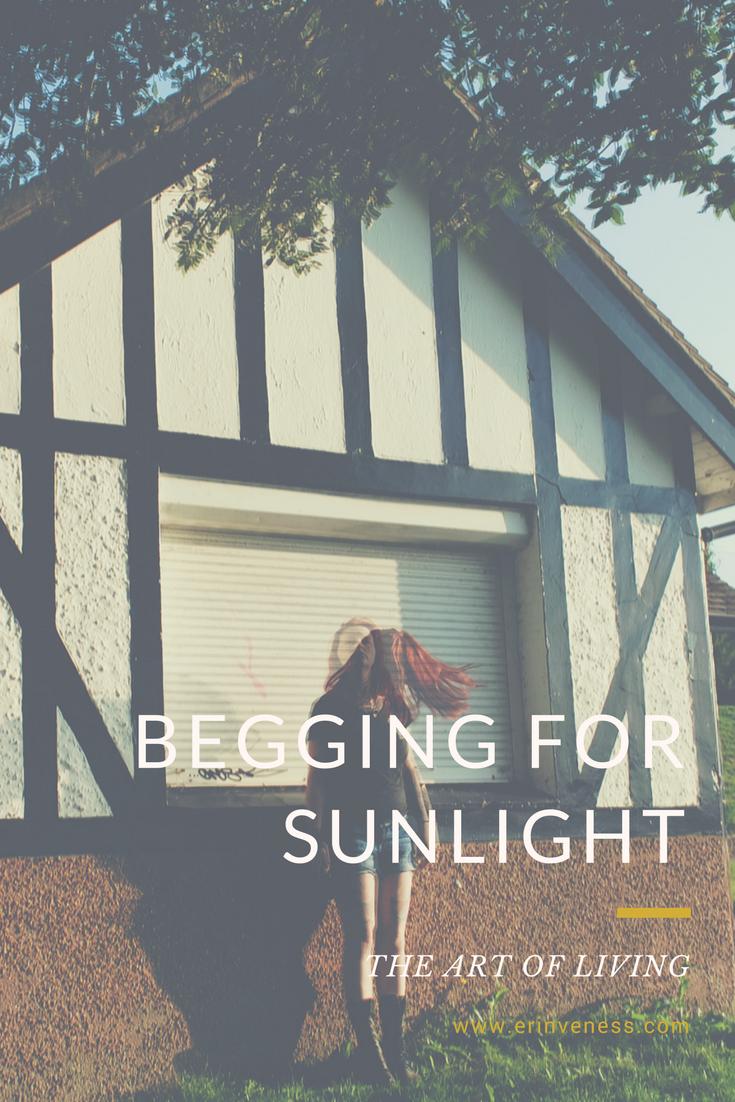 Begging For Sunlight