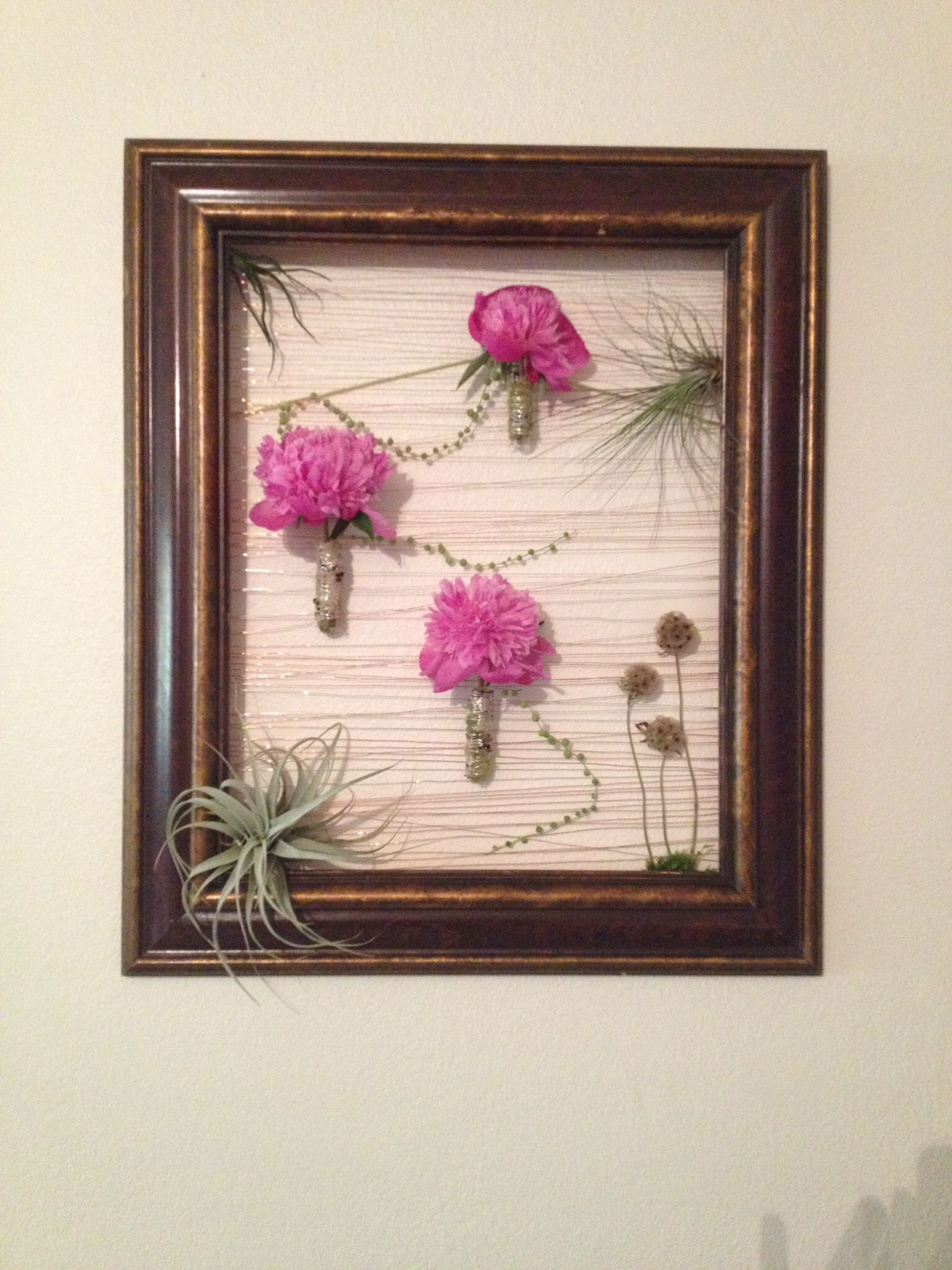 Large Wall Frame With Peonies Is Mossy Tubes, Scabiosa And