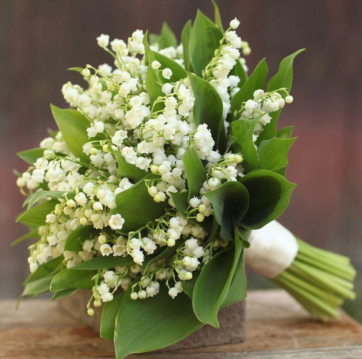 Schöner Hochzeitsstrauß aus: Weiße Maiglöckchen + Laub #whitebridalbouquets