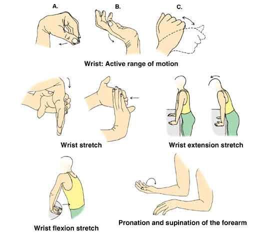 Wrist exercises. I\'m sure most computer users should do this ...
