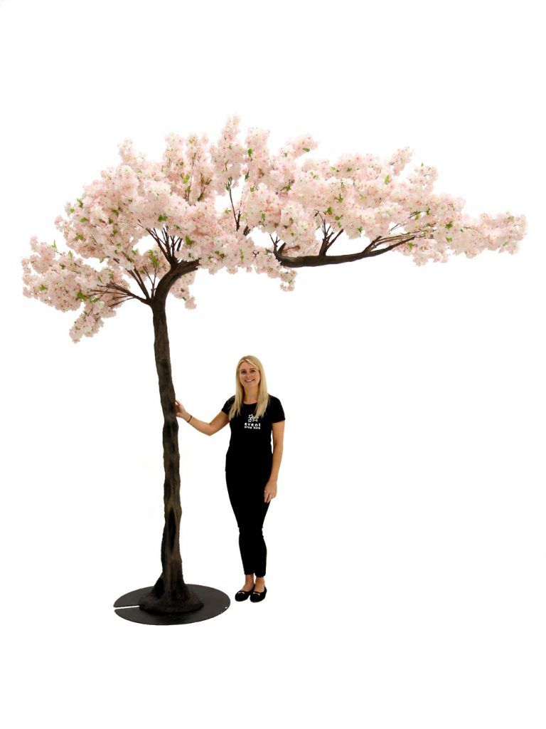 Pink Cherry Blossom Canopy Tree 3 3m Event Prop Hire Artificial Cherry Blossom Tree Tree Canopy Pretty Trees