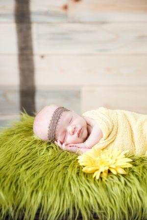 Newborn Photos | Newborn Baby Poses & Ideas | Cute Newborn Pictures | Denver Colorado Newborn Photographer