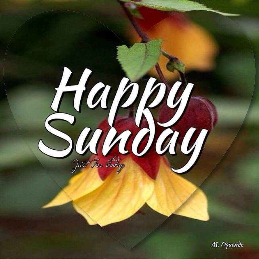 Enjoy your day of rest. Happy sunday pictures, Happy