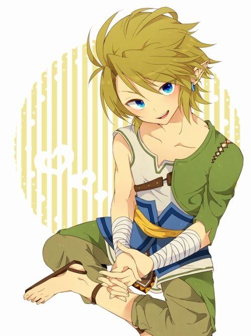 Legend Of Zelda Twilight Princess Link Fanart Looks