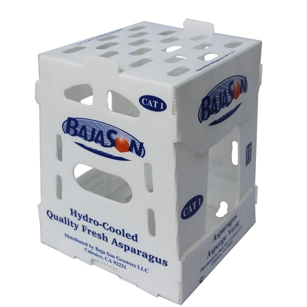 China Stackable Polypropylene Plastic Box Tote Boxes Corrugated Plastic Packing Cartons Polypropylene Plastic