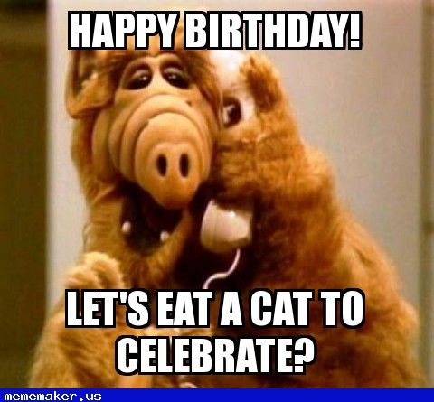 Happy Birthday Meme Alf Wwwpicturessocom