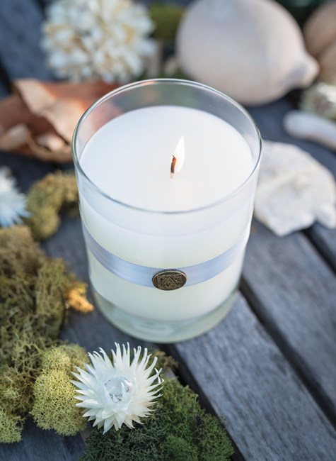 White Teak and Moss in Aromatique's Candle in Glass- Enjoy a Clean Blend of Moss and Teak Wood!