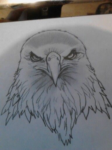 Eagle head | Tattoo designs | Eagle head, Tattoos, Tattoo ...