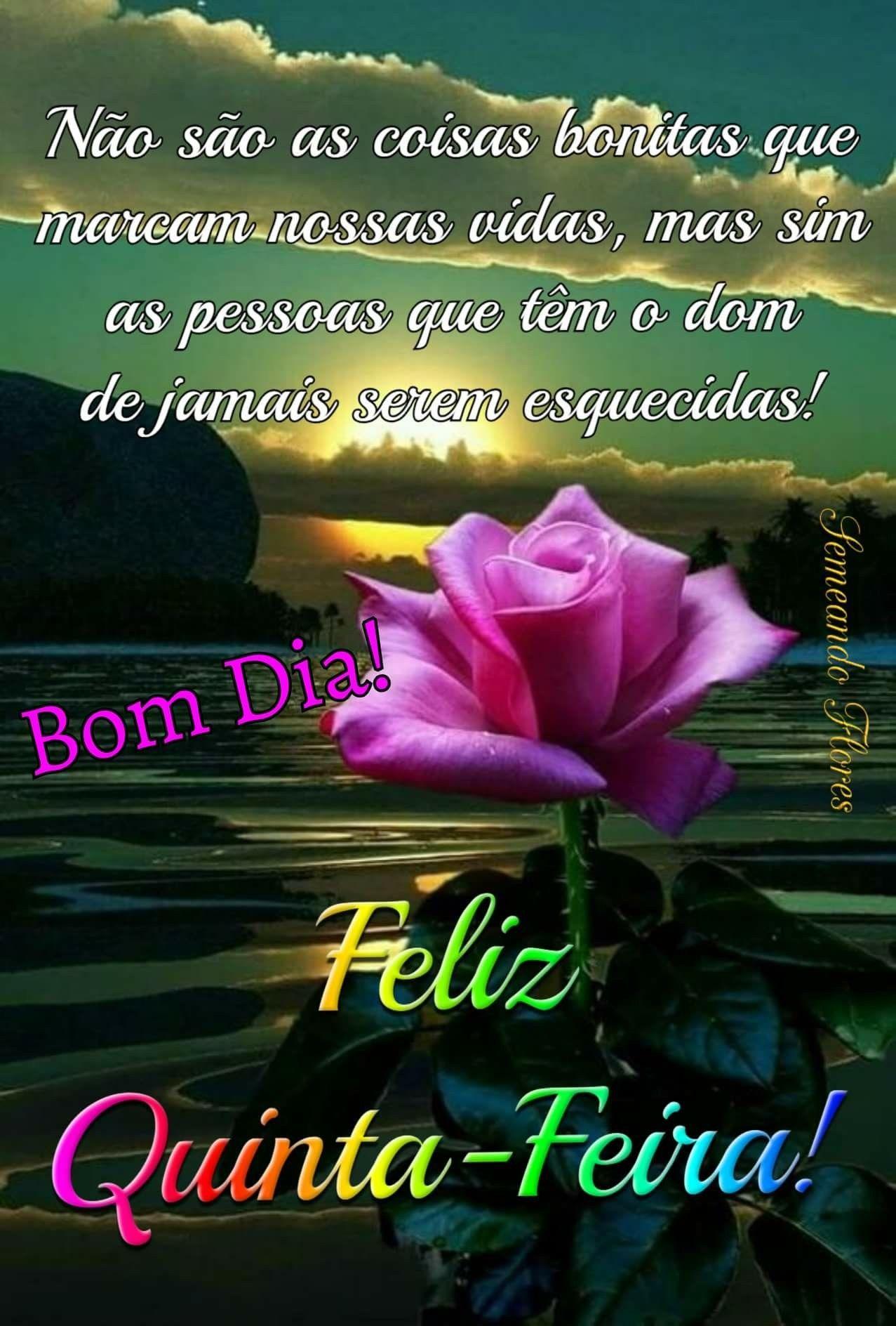 Pin De Lidia Oliveira Em Bom Dia Com Imagens Mensagem De Boa