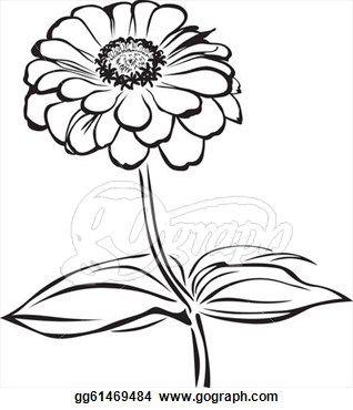 Pix For Zinnia Flower Drawing Flower Drawing Zinnia Flowers Drawings