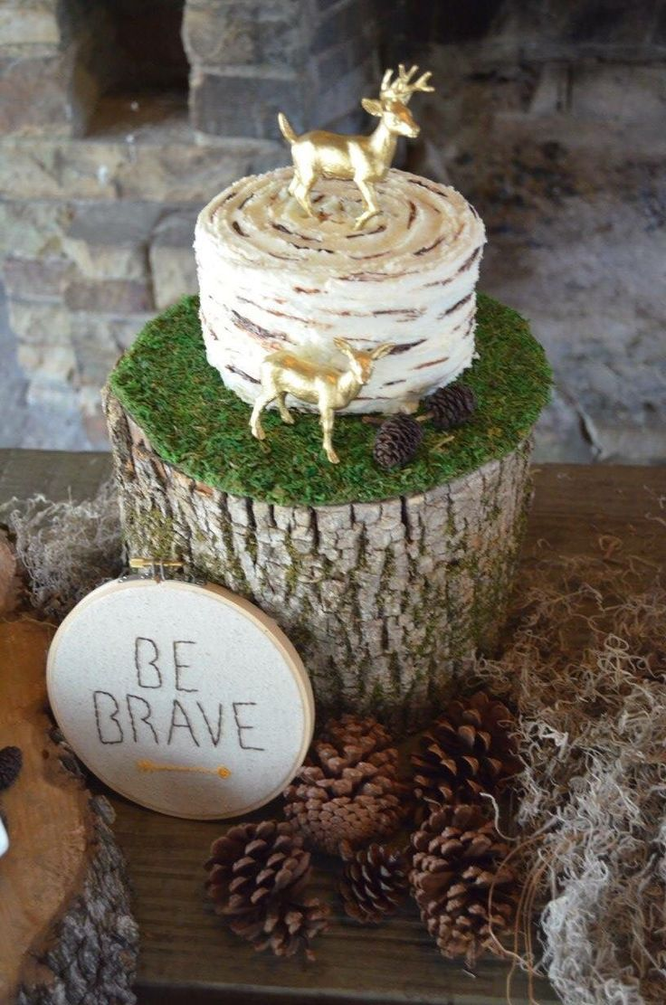 Wild One First Birthday Party Birch Tree Smash Cake B