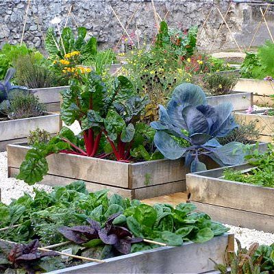 how to make terrace vegetable garden