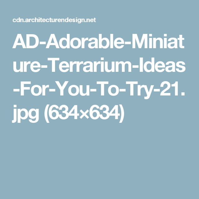 AD-Adorable-Miniature-Terrarium-Ideas-For-You-To-Try-21.jpg (634×634)