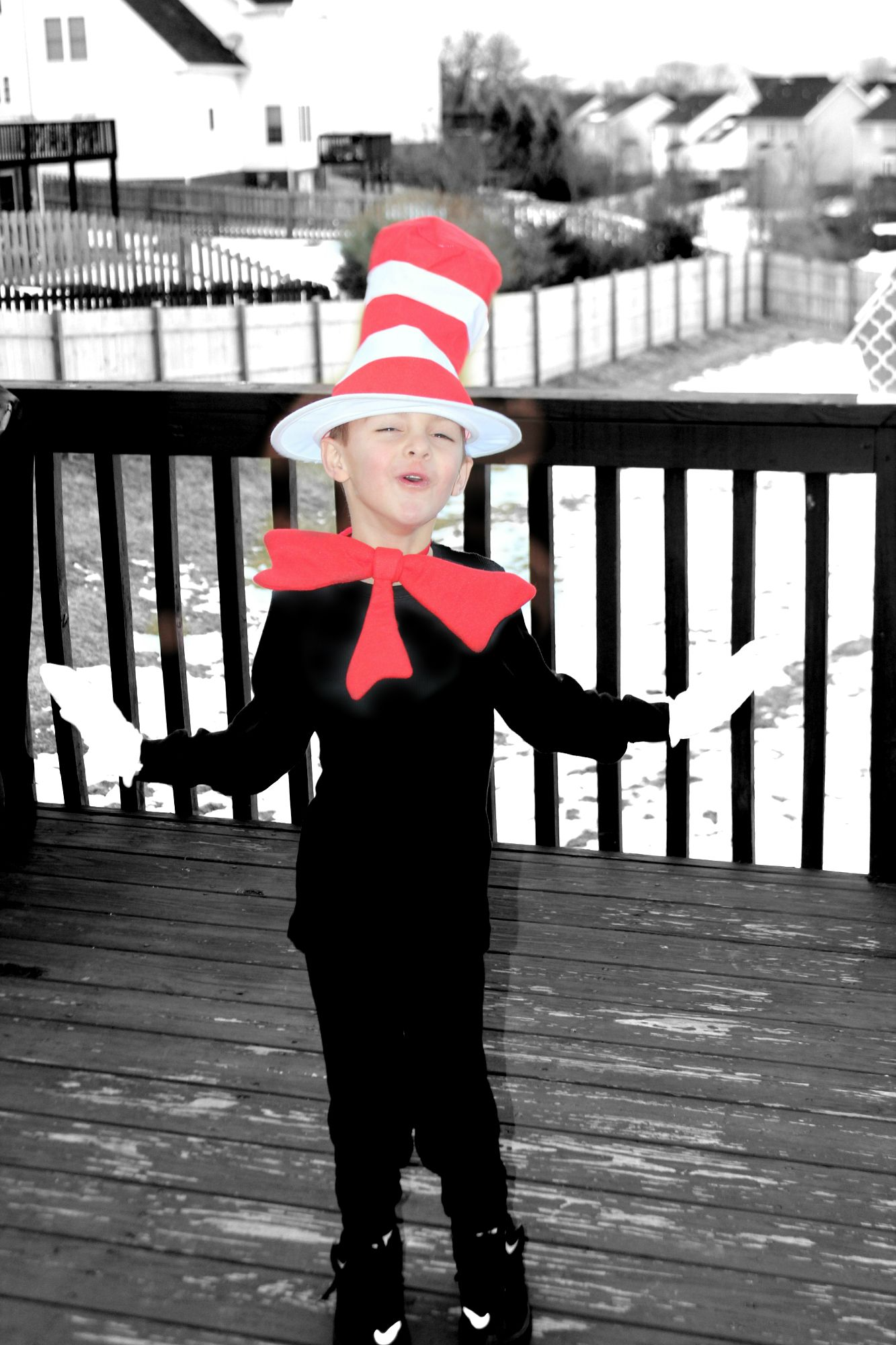 THING 2 CAT IN THE HAT CHILD BOYS GIRLS SCHOOL BOOK WEEK HALLOWEEN COSTUME