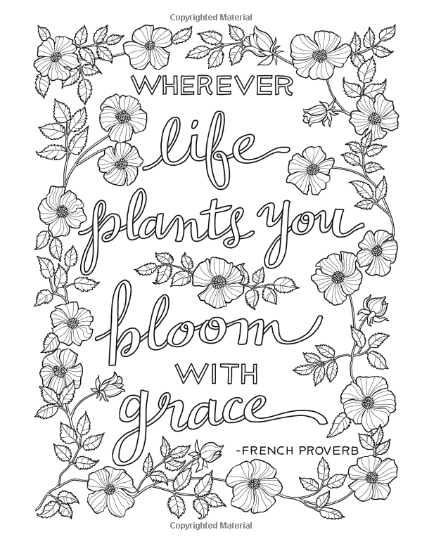 Amazon.com: Inkspirations in the Garden: Fabulous Floral ...