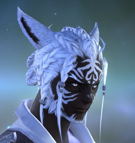 Final Fantasy Xiv A Realm Reborn Male Miqote Kool Fantasy