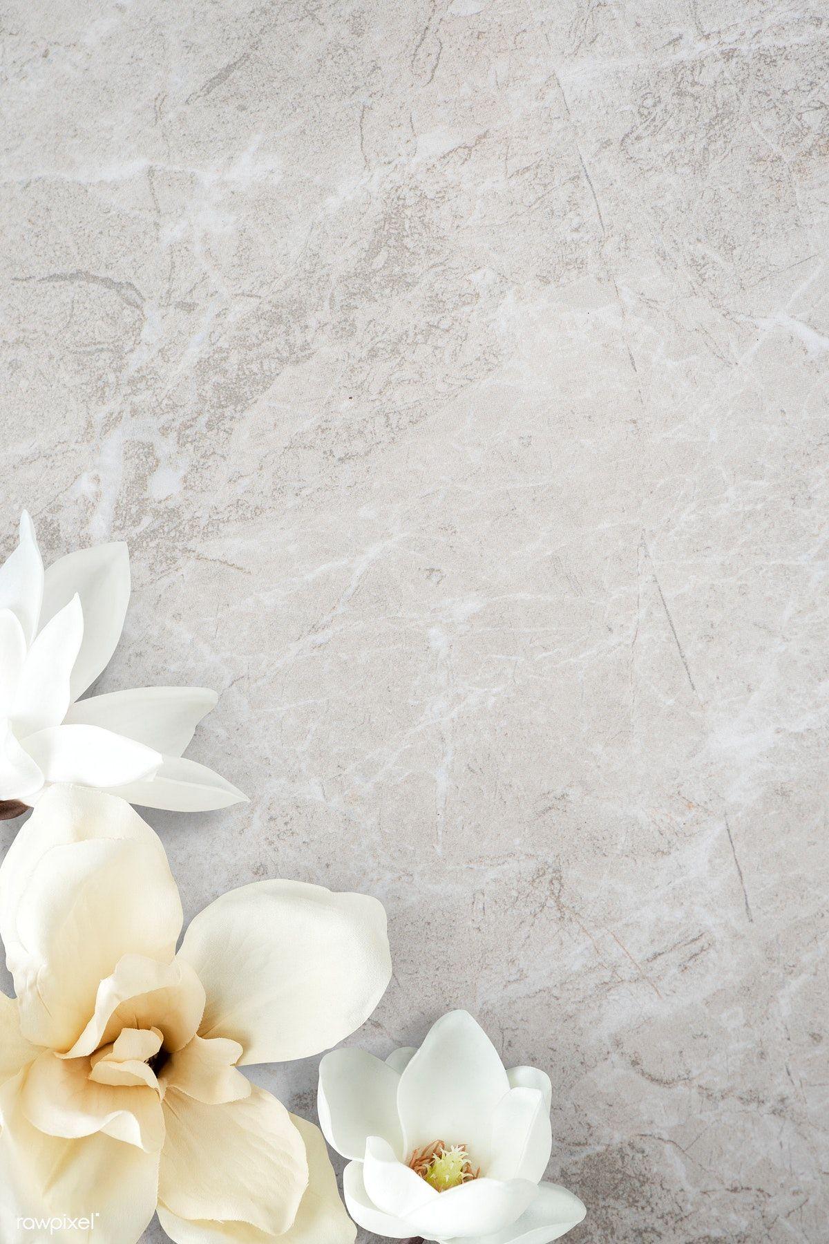 Download Premium Psd Of White Magnolia Pattern Background 1204187 Flower Backgrounds Background Patterns Flower Background Iphone Flower theme wallpaper images