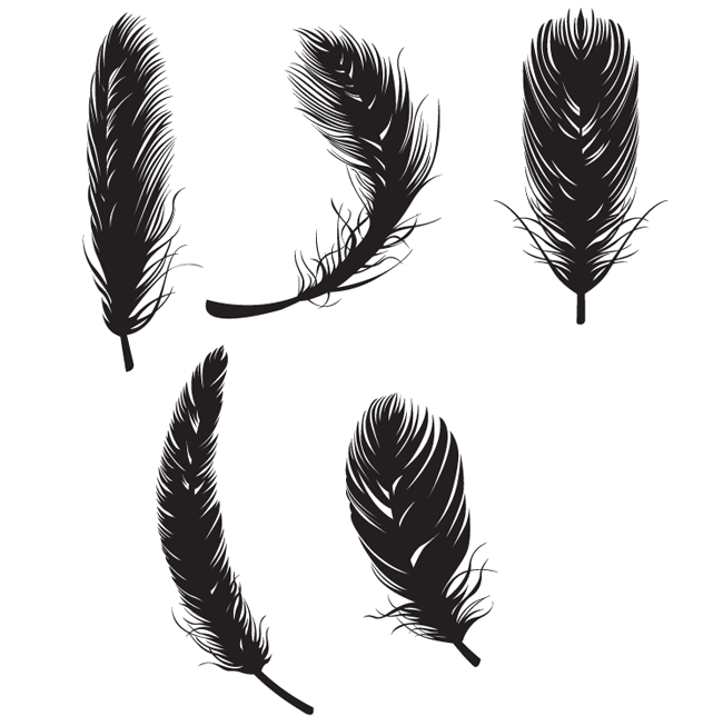 Feather Free Vectors Free Vector Site Download Free Vector Art Graphics Feather Vector Feather Graphic Feather Illustration