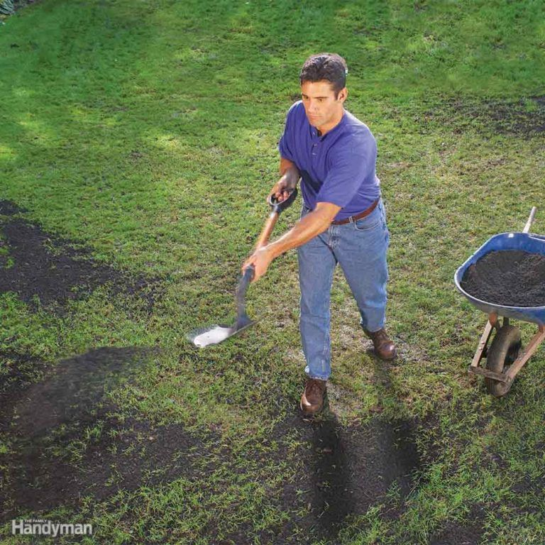 The Best Natural and Organic Green Lawn Care Tips Lawn