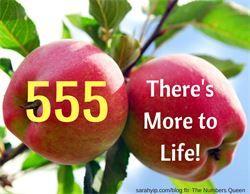 Sarah Yip 555 Numerology Lifepath 5 Numerology