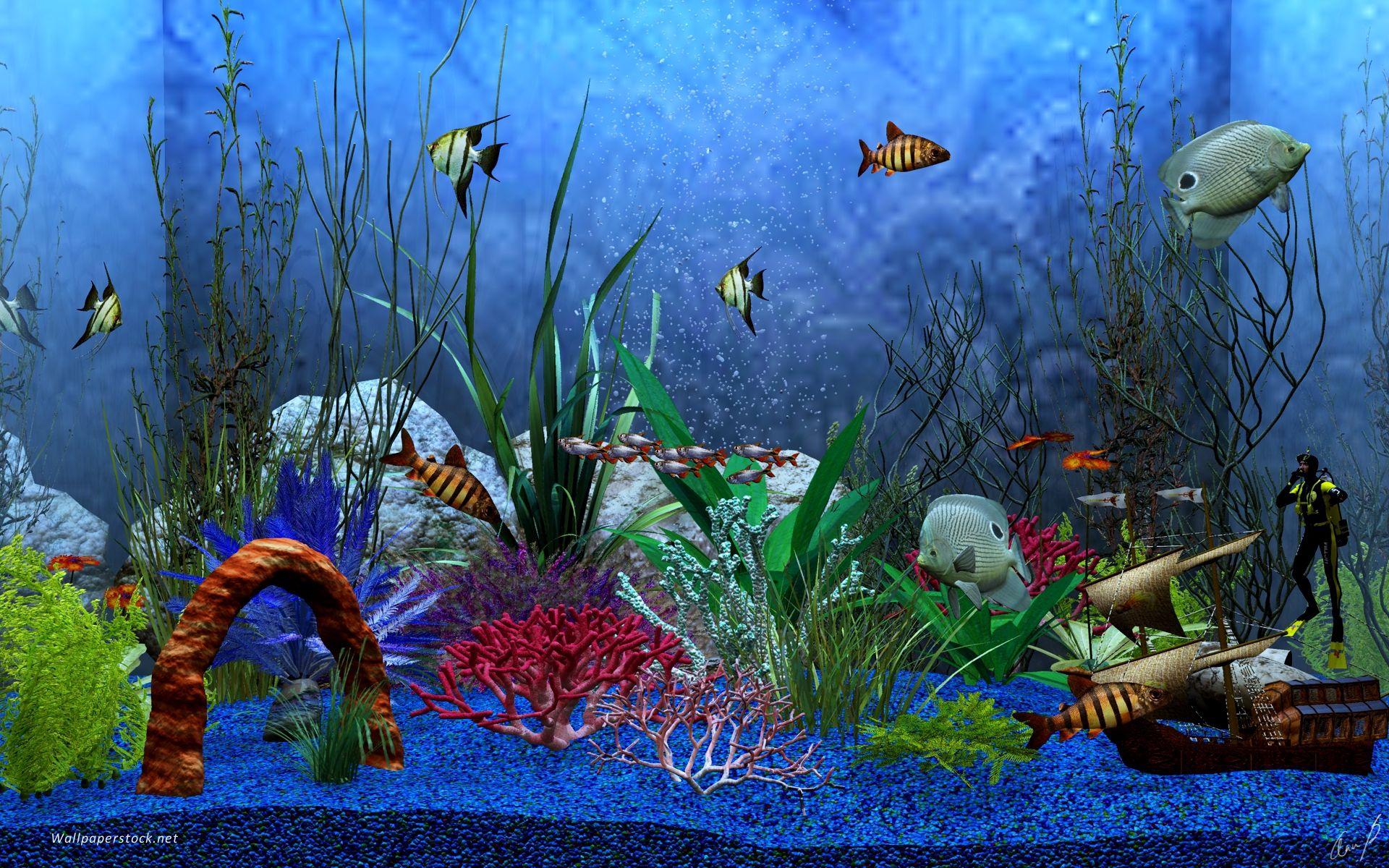 видео обои на рабочий стол анимация аквариум малых