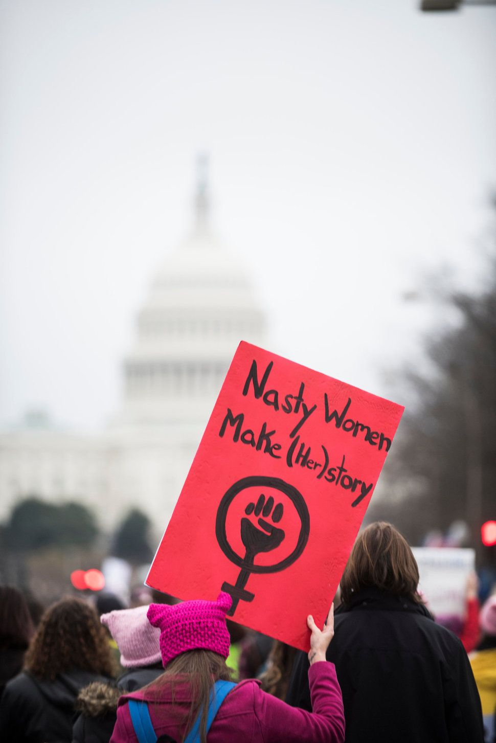 89 Badass Feminist Signs From The Women S March On Washington The Huffington Post Womens March Anti Trump Protest Signs Feminist Quotes