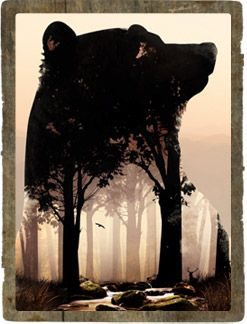 Smoky Mountains Bear Art