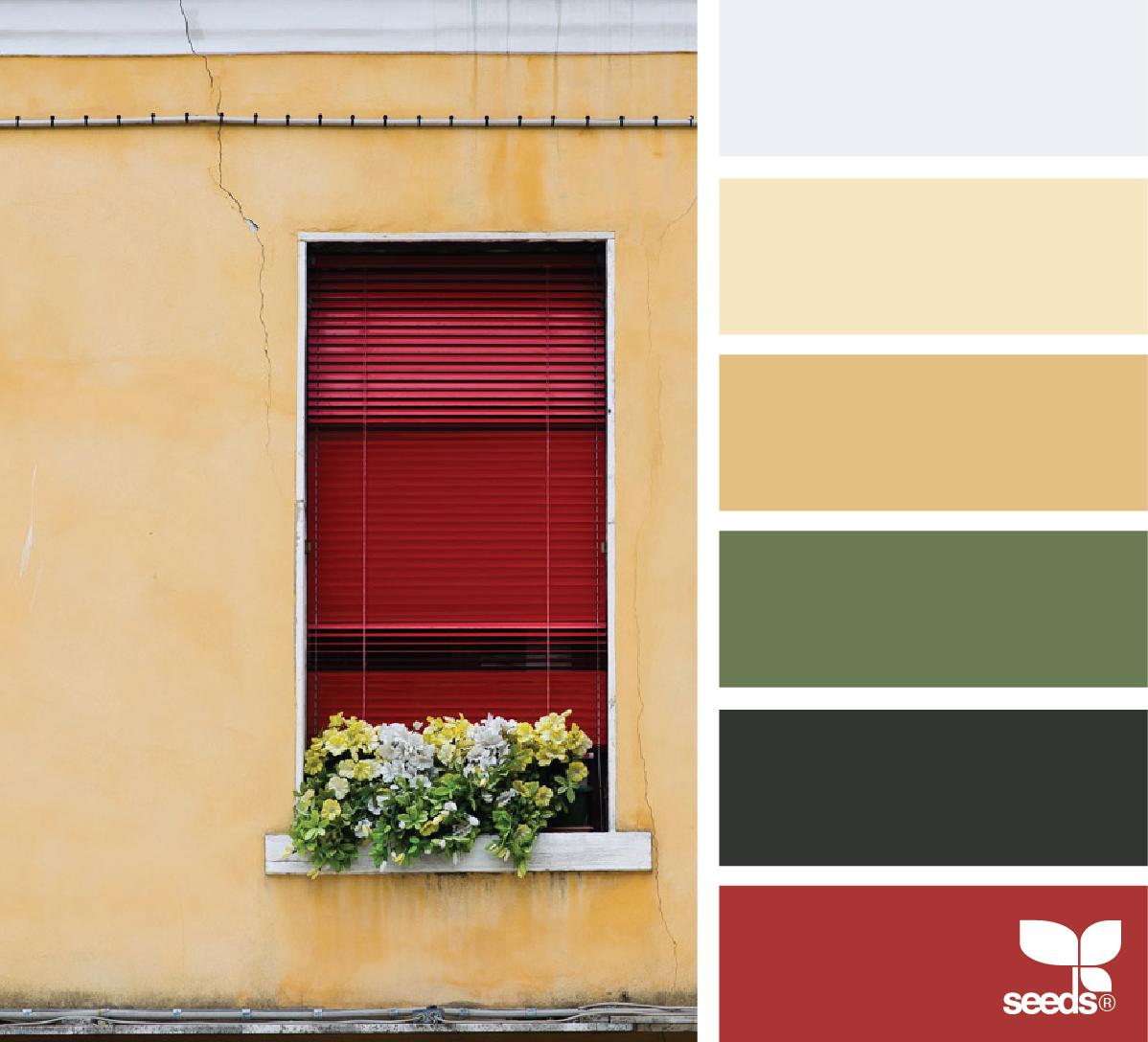 Color Window Seeds Color Kitchen Color Red Design Seeds