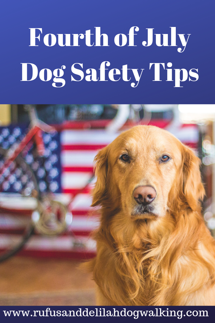 Fourth Of July Dog Safety Tips Dog Safety Dogs Dog Care