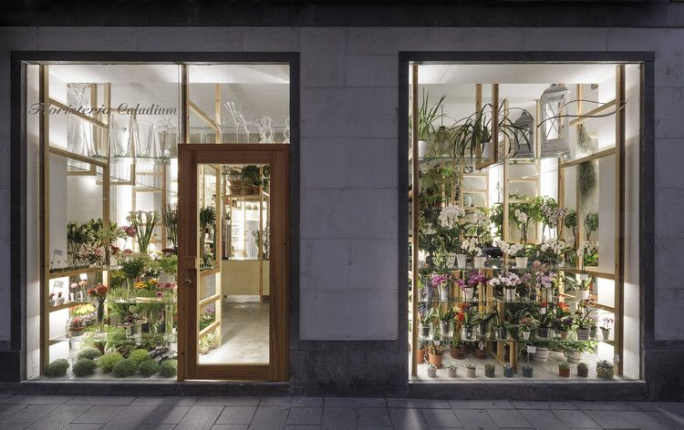 Orchids And Ladders Serrano Baquero Arquitectos Co Hinh ảnh