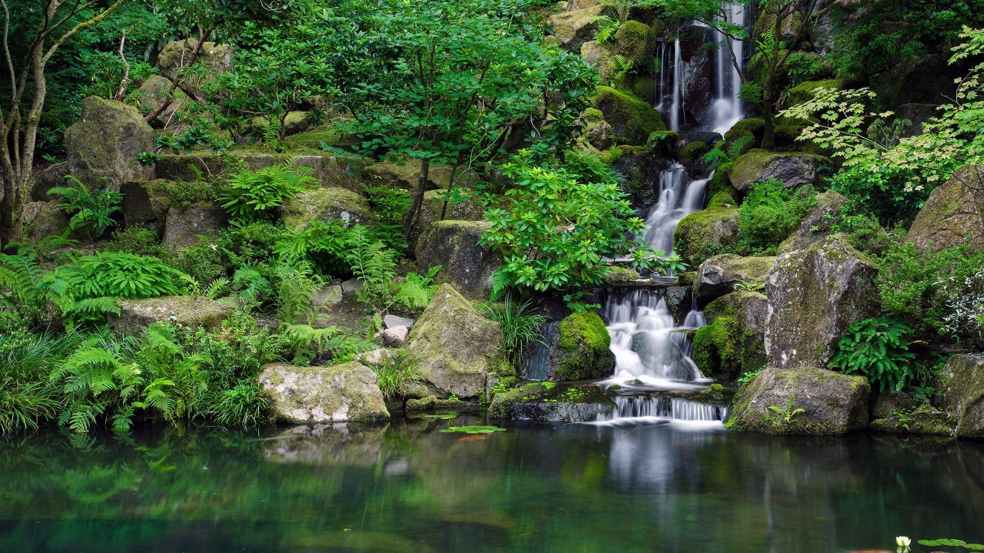 Download Wallpaper 1920x1080 Waterfall River Grass Herbs Full Hd 1080p Hd Background Forest Waterfall Waterfall Wallpaper Portland Japanese Garden