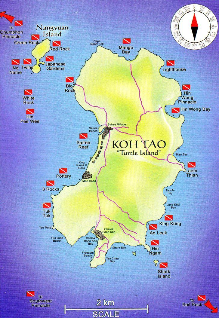 De beste dykkesenterne i Koh Tao - Thailand. Her er muligheten for og se store skillpadder! Jeg elsker skillpadder og synes selv dette var en av tidenes opplevelser. Det skal sies at dette var i perioden jeg oppdaget dykking (les: brodern tvang meg med på det) og jeg var frelst <3