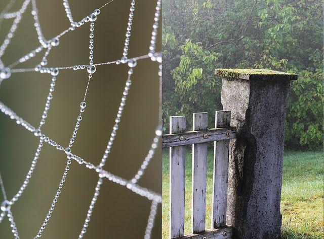 tela de araña con abalorios