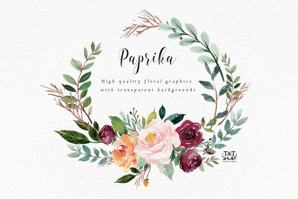 Watercolor Flower Clipart Paprika By Twigs And Twine On