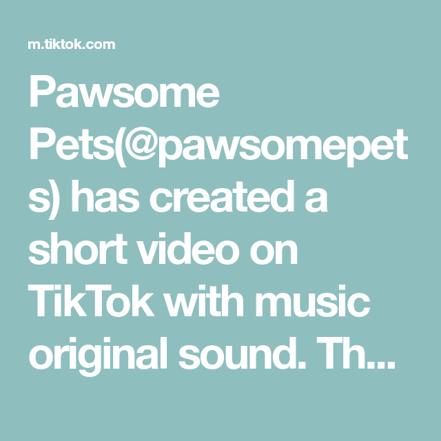 Pawsome Pets Pawsomepets Has Created A Short Video On Tiktok With Music Original Sound The Cutest Hats Fred And George Weasley The Originals Flirting