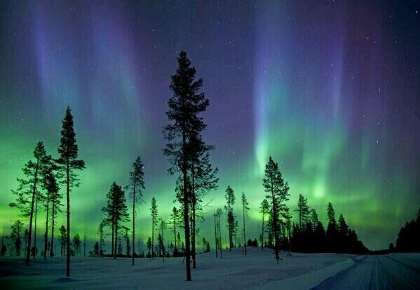 MotivateN0w : RT ExclusiveGems: Aurora Borealis at the Artcic Circle  https://t.co/GhZbaKbofP) https://t.co/j8rRhaobnO