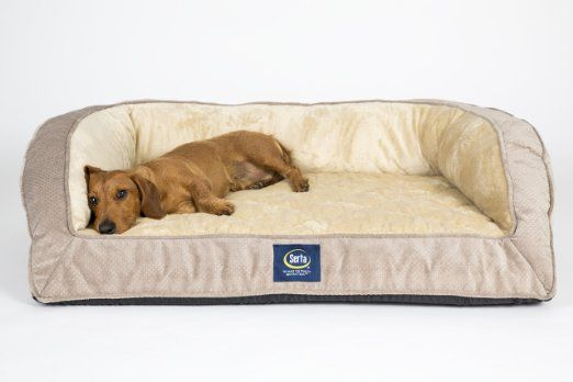 Amazon Com Serta Orthopedic Quilted Couch Large Mocha Pet Supplies Orthopedic Dog Bed Dog Bed Large Cute Dog Beds