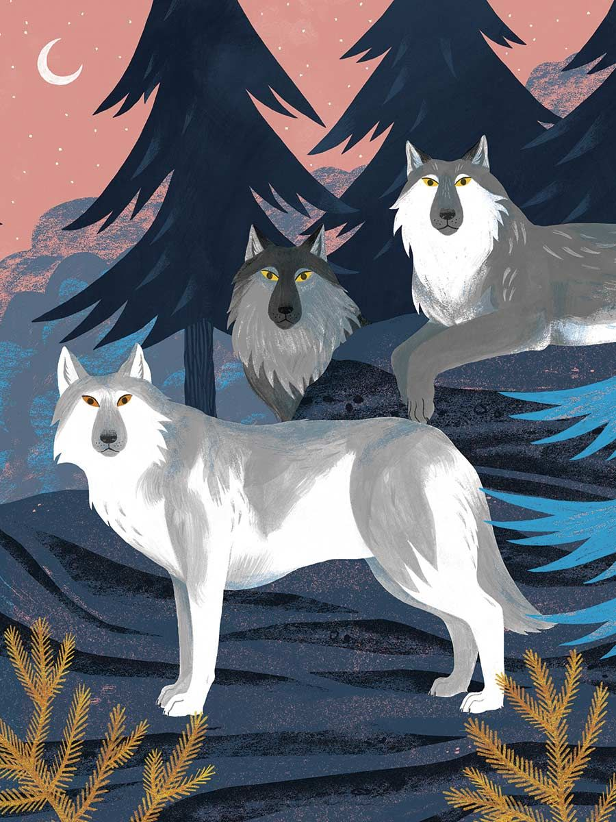 Move Learn to Think and Act Like 15 Amazing Animals Howl like a Wolf!