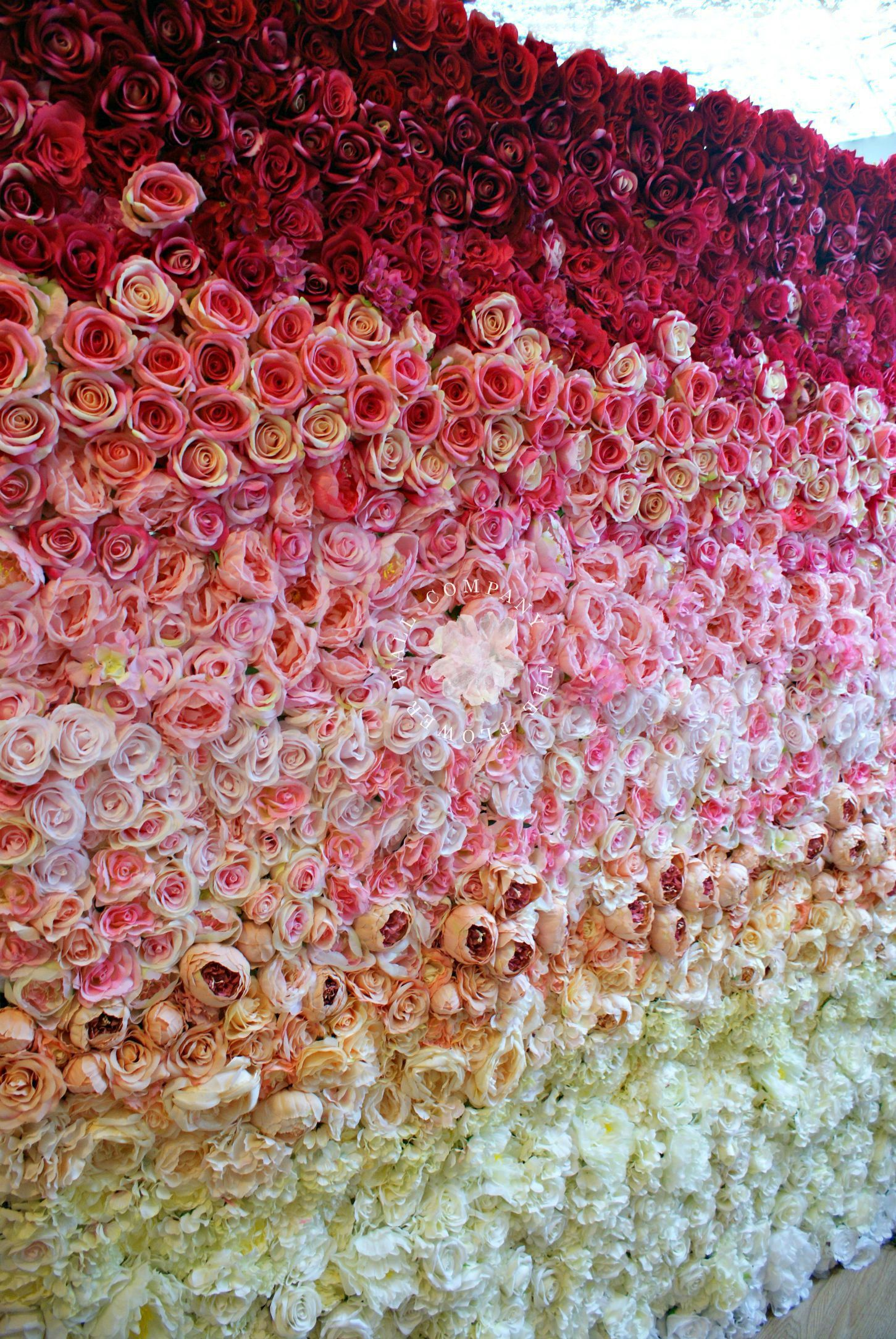 36c512bbac24 Garden Rose Ombre Flower Wall, ombre flower wall