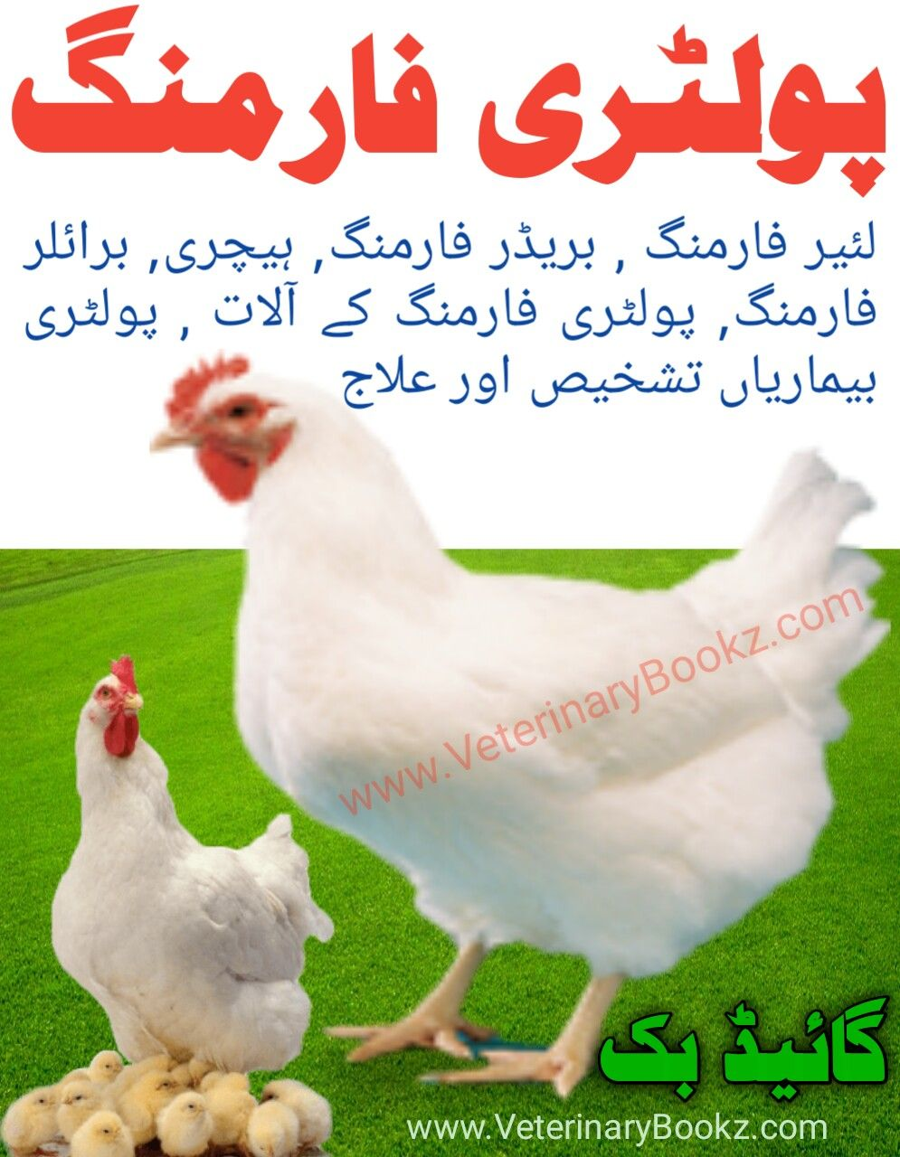 Poultry Guide Book PDF Free Download Free Veterinary