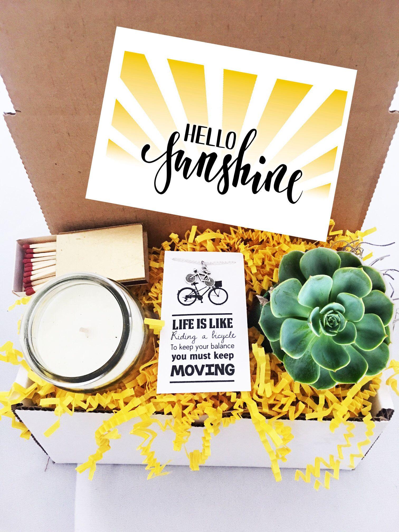 Cheer up succulent gift box friendship gift birthday