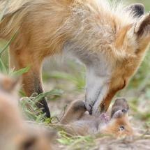 Mum and babe