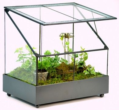 Great Terrarium For Your Herb Garden Or Display Your Fairy Garden In Style.