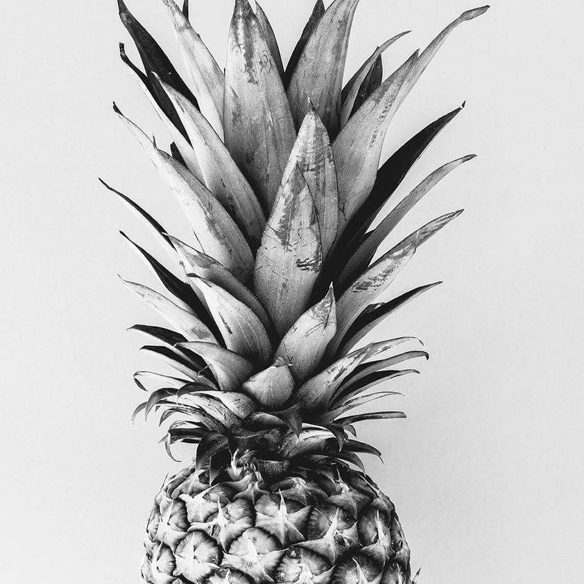 Tropical Pineapple Black and White Printable Art