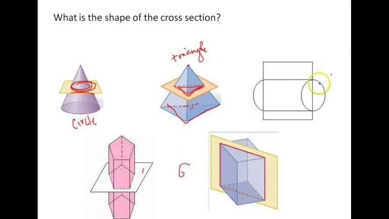 7 7th Grade Cross Sections Worksheet