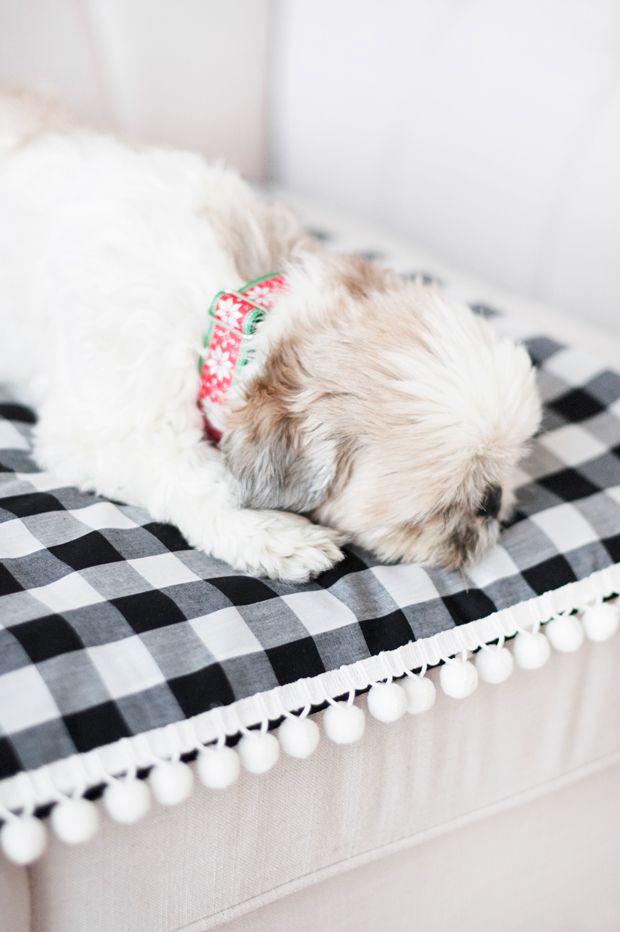 Diy No Sew Dog Travel Blanket With Images Diy Dog Blankets