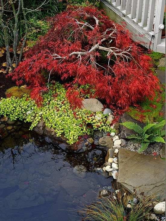 garden lawn designs #frontyardlandscaping ideas ...