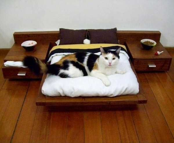 33 Modern Cat And Dog Beds, Creative Pet Furniture Design Ideas
