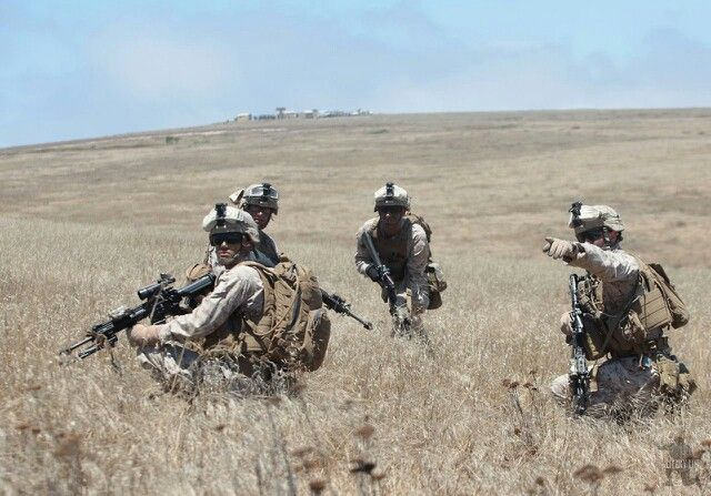 Infantry Fire Team : Fire team usmc pinterest marines and marine corps