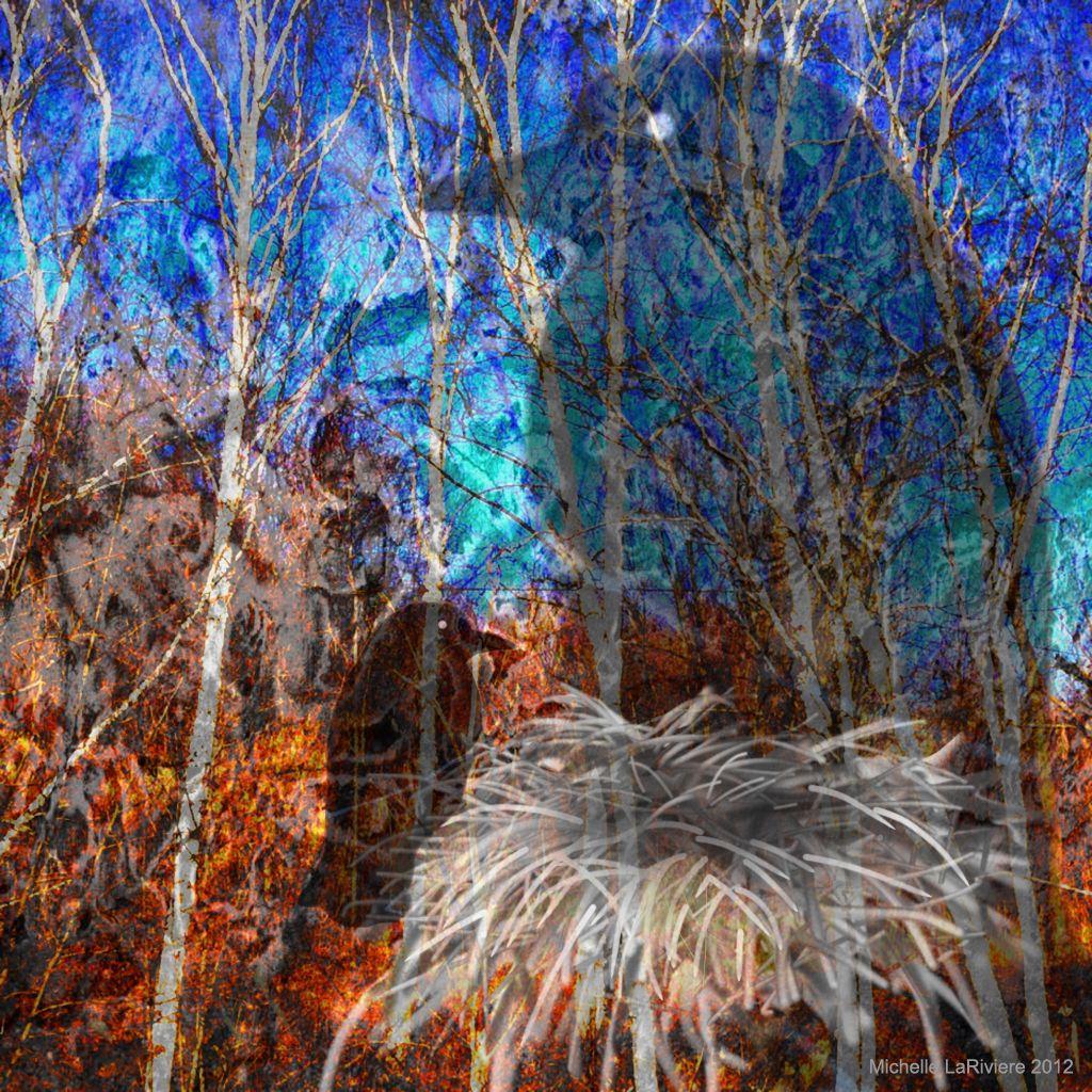 Nid bouleau ni corbeau #iphoneart #digitalart #digitalcollage #appart #ravens #nests #emptynest #art #family #corbeau #bouleau